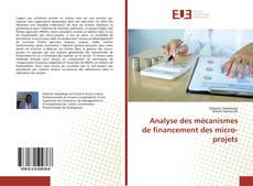 Buchcover von Analyse des mécanismes de financement des micro-projets