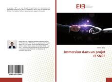 Bookcover of Immersion dans un projet IT SNCF