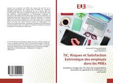 Couverture de TIC, Risques et Satisfaction Extrinsèque des employés dans les PMEs