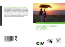 Обложка Acacia Coriacea subsp. sericophylla
