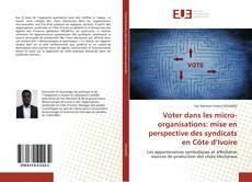 Voter dans les micro-organisations: mise en perspective des syndicats en Côte d'Ivoire kitap kapağı