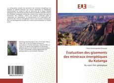 Bookcover of Évaluation des gisements des minéraux énergétiques du Katanga