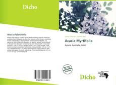 Couverture de Acacia Myrtifolia