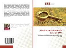 Bookcover of Gestion de la trésorerie dans un EMF