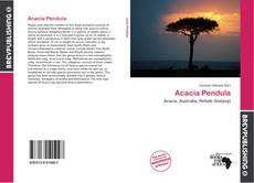Couverture de Acacia Pendula