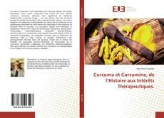 Curcuma et Curcumine, de l'Histoire aux Intérêts Thérapeutiques.的封面