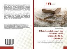 Bookcover of Effet des rotations et des fumures sur la disponibilité du phosphore