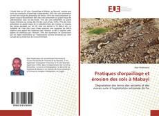 Pratiques d'orpaillage et érosion des sols à Mabayi的封面