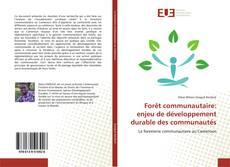 Buchcover von Forêt communautaire: enjeu de développement durable des communautés
