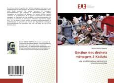 Bookcover of Gestion des déchets ménagers à Kadutu