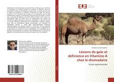 Buchcover von Lésions de gale et déficience en Vitamine A chez le dromadaire