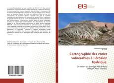 Cartographie des zones vulnérables à l'érosion hydrique kitap kapağı