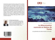 La détermination nominale en Mahou de Tienko的封面