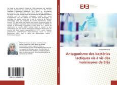 Antagonisme des bactéries lactiques vis à vis des moisissures de Blés的封面