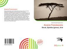 Обложка Acacia Translucens