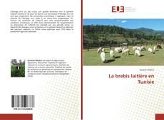 La brebis laitière en Tunisie kitap kapağı