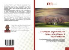 Buchcover von Stratégies paysannes aux risques climatiques à Toucountouna