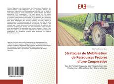 Borítókép a  Strategies de Mobilisation de Ressources Propres d'une Cooperative - hoz
