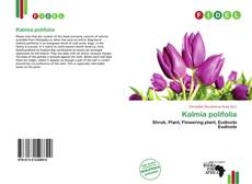 Bookcover of Kalmia polifolia