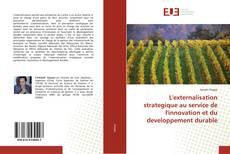 L'externalisation strategique au service de l'innovation et du developpement durable kitap kapağı