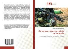 Borítókép a  Cameroun : sous nos pieds un incendie - hoz