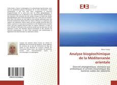 Couverture de Analyse biogéochimique de la Méditerranée orientale