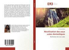 Buchcover von Réutilisation des eaux usées domestiques