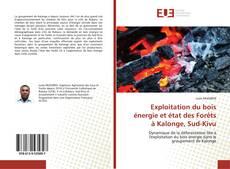 Exploitation du bois énergie et état des Forêts à Kalonge, Sud-Kivu kitap kapağı