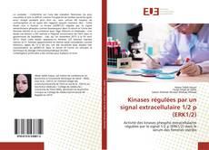 Copertina di Kinases régulées par un signal extracellulaire 1/2 p (ERK1/2)
