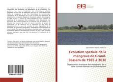 Evolution spatiale de la mangrove de Grand-Bassam de 1985 à 2030的封面