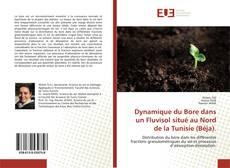 Bookcover of Dynamique du Bore dans un Fluvisol situé au Nord de la Tunisie (Béja).