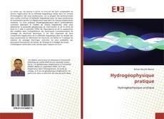 Bookcover of Hydrogéophysique pratique