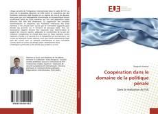 Capa do livro de Coopération dans le domaine de la politique pénale