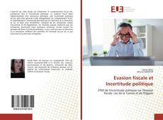 Bookcover of Evasion fiscale et Incertitude politique