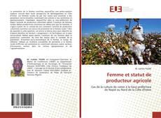 Portada del libro de Femme et statut de producteur agricole