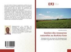 Bookcover of Gestion des ressources naturelles au Burkina Faso