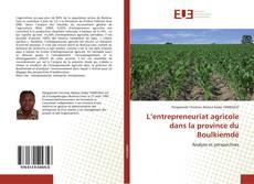 Portada del libro de L'entrepreneuriat agricole dans la province du Boulkiemdé