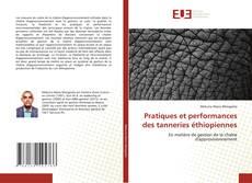 Bookcover of Pratiques et performances des tanneries éthiopiennes