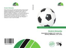 Bookcover of André Almeida