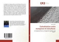Bookcover of Cohabitation entre mangrove et riziculture: