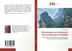 Bookcover of Dommages au revêtement des tunnels par la DGBEM