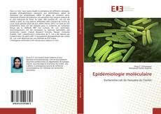 Borítókép a  Epidémiologie moléculaire - hoz