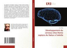 Portada del libro de Développement du cerveau chez Homo sapiens du fœtus à l'adulte