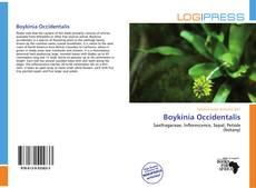 Buchcover von Boykinia Occidentalis