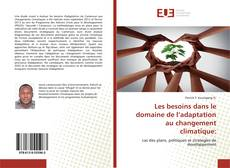 Capa do livro de Les besoins dans le domaine de l'adaptation au changement climatique: