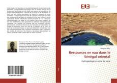 Copertina di Ressources en eau dans le Sénégal oriental