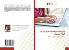 Bookcover of Manuel de l'informatique niveau 1&2