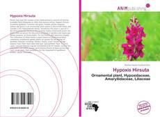 Bookcover of Hypoxis Hirsuta