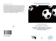 Fernando Gaibor kitap kapağı