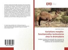 Bookcover of Variations morpho-fonctionnelles testiculaires chez le dromadaire